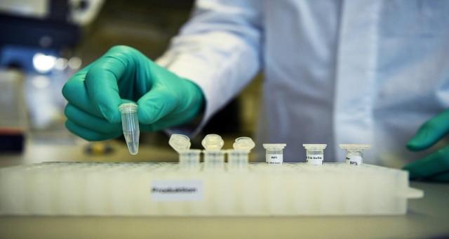 Güney Kıbrıs'ta 34 mutasyonlu virüs dolaşımı