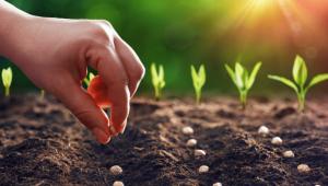 Organik tarım yapan üreticilere hak edişleri ödendi