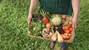 Organik Tarım yapan üreticilere hakedişleri ödendi…